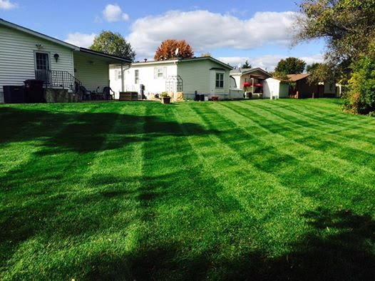 Mobile and Manufactured Home lawn mowing and landscaping services